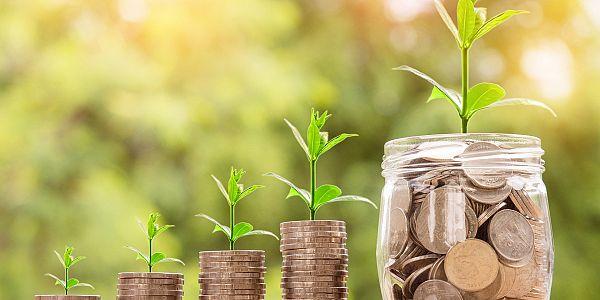 Dr.  Amadea Dobovišek: Kako ustvariti prihodke v času krize in po njej